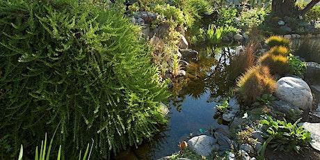 Sunday in the Garden: Gottlieb Native Garden tickets