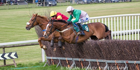 Eggesford Point-To-Point Livestream tickets