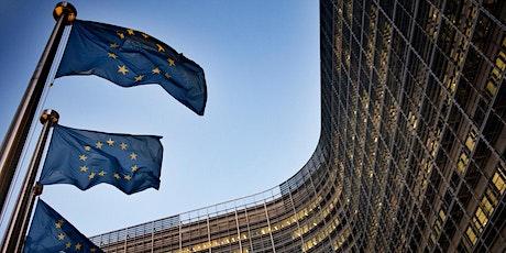 Welcome to Brussels - EU Essential Skills billets