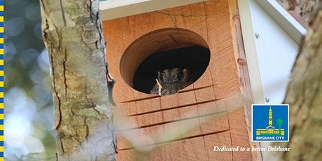 All about nest boxes! tickets