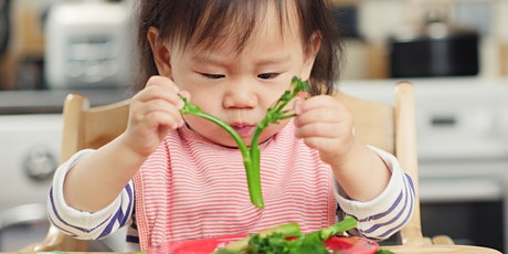 Introduction to Solid Foods Workshop, 13:30 - 14:30, 14/7/2021 tickets