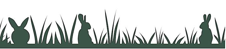 Pest Rabbit Control Workshop image