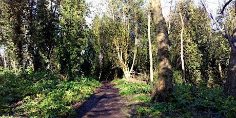 Netherwood Green - Conservation Task tickets