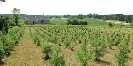 Tree Planting Information Session tickets
