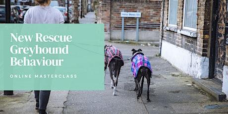 New Rescue Greyhound Behaviour Masterclass tickets