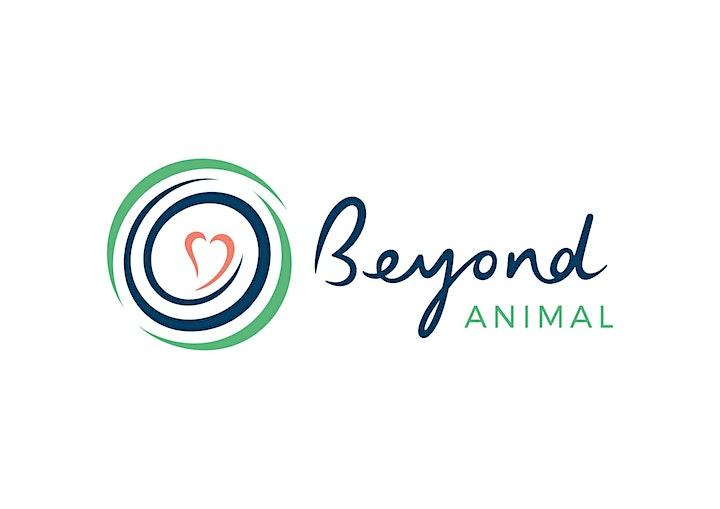 "VEGAN FINANCE WEBINAR ""From Animal-Welfare Awareness to Vegan Finance"" image"