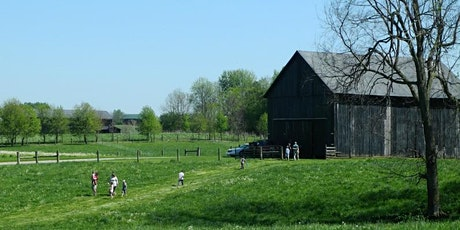 July Farm Tour: Behind the Scenes at Elmwood Stock Farm tickets