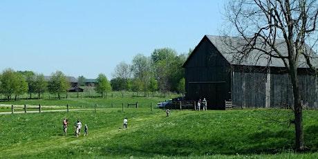 September Farm Tour: Behind the Scenes at Elmwood Stock Farm tickets