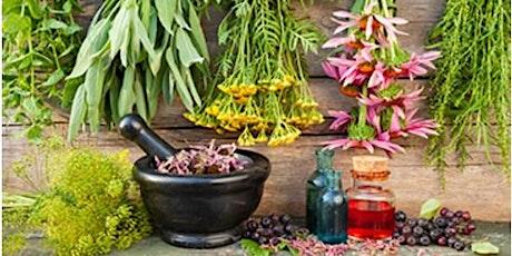 Kitchen Herbal Medicine tickets