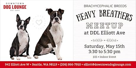 Heavy Breathers Meetup at DDL Elliott - Brachycephalic Breeds tickets
