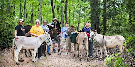 PVDR East Tour and Hee Haw Hike tickets