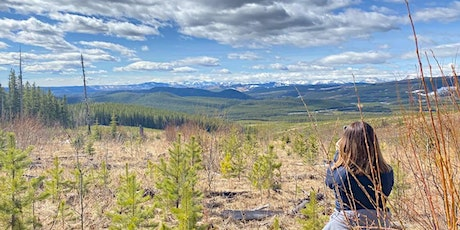 Marble Mountain- Intermediate Guided hike (NW of Sundre) tickets