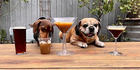 Fitzroy Puppy Pub Crawl tickets