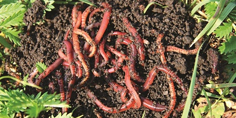 Worm Farming with the City of Wanneroo tickets