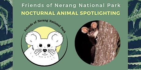 Spotlighting - Nerang National Park tickets