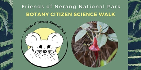 Botany Walk - Nerang National Park tickets