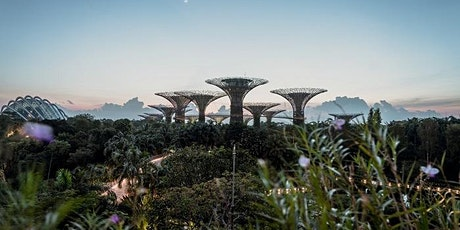 RIBA International Chapter Chats - Women in Architecture - Singapore tickets