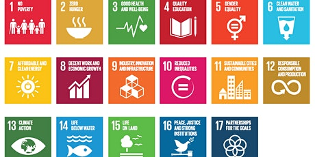 Introduction to the SDGs with Limerick PPN tickets