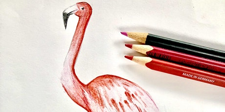 Wellbeing Art Sessions - Self Esteem and Flamingo in Coloured Pencil tickets