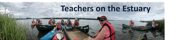 Weeks Bay Teachers on the Estuary: Wild for Watersheds image