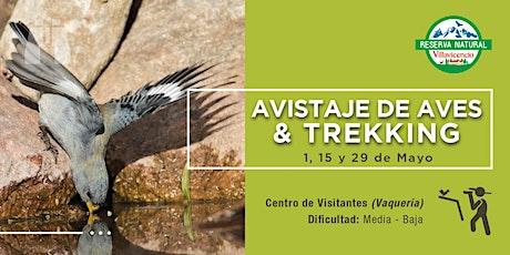 Avistaje de Aves + Trekking en Reserva Natural Villavicencio entradas
