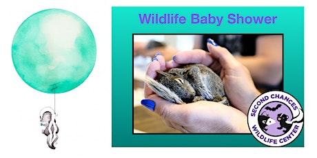 Wildlife Baby Shower tickets