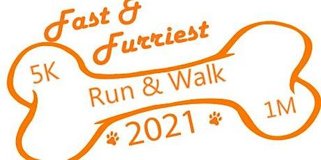 Fast & Furriest 5K Run/1K Walk: In-Person or Virtual! tickets