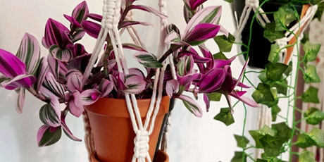 Beginners Macrame Workshop - Cartwright Plant Hanger tickets
