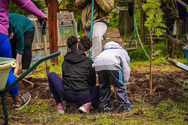 Dix Street Garden Volunteer Hours image
