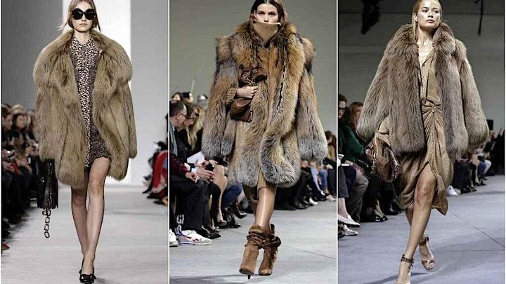 Imagen de Muerte animal el costo para la  industria de la moda