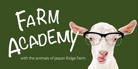 Farm Academy: Training with Positive Reinforcement tickets