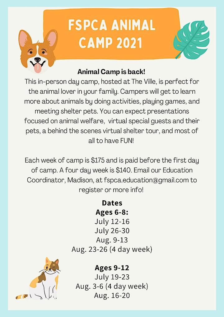 Fredericton SPCA Animal Camp image