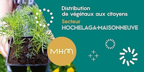 Distribution des végétaux - Hochelaga-Maisonneuve billets
