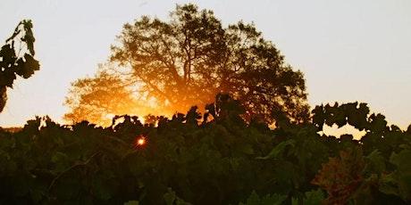 Wine Masters: Kokomo Winery @ Council Oak Steaks & Seafood tickets