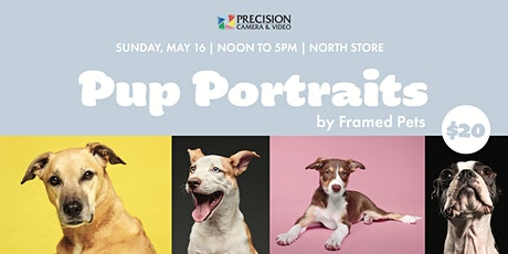 Pup Portraits tickets