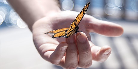 Working with Trauma: Transformation and Metamorphosis tickets