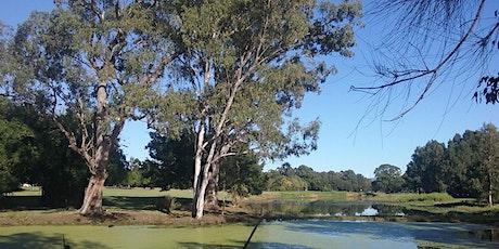 Gold Coast Regional Botanic Gardens Community Planting day tickets