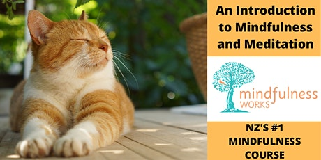 An Introduction to Mindfulness and Meditation 4-Week Course — Mt Eden tickets