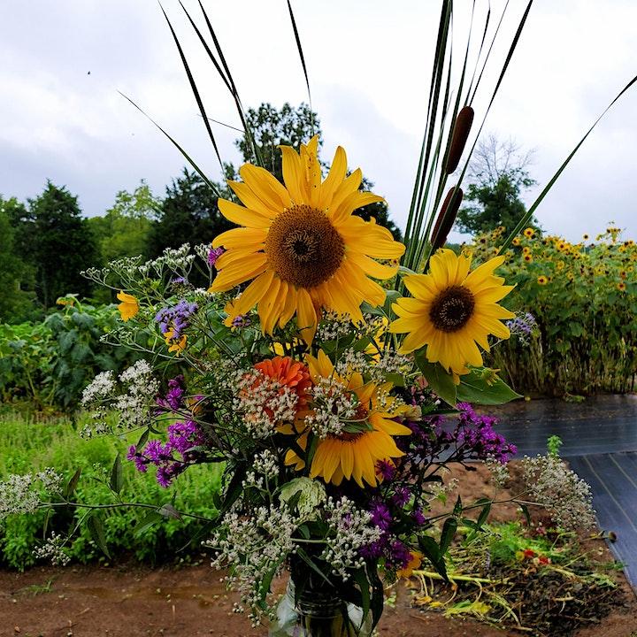 Sunflower Field & Wildflower Explosion - Opening Night image