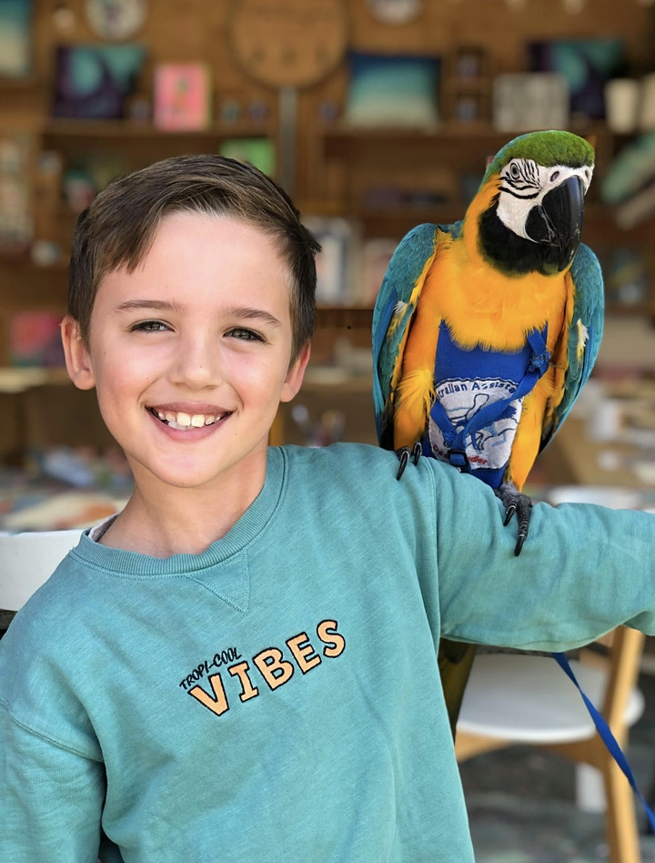 All day play centre pass & life drawing with Smee the macaw image
