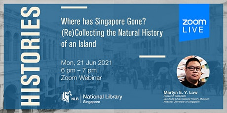 Histories: Where has Singapore Gone? ingressos