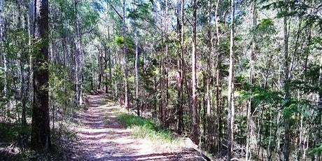Guided Walk: Conserving our Unique Australian Bush tickets