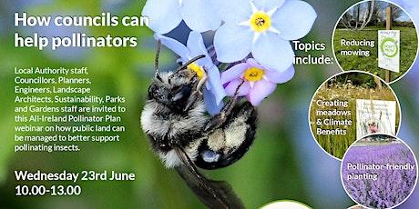 How Councils can help Pollinators tickets