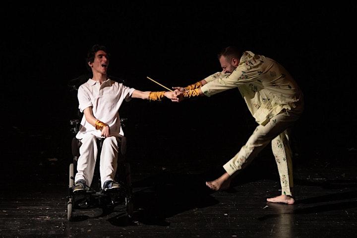 Immagine Verso una nuova inclusività: fragilità e arti performative -Tavola Rotonda