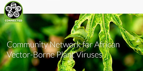 Community Network for African Vector-Borne Plant Viruses (CONNECTED) tickets