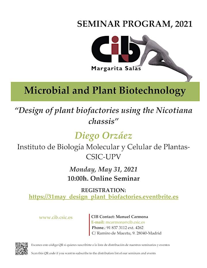Imagen de Design of plant biofactories using the Nicotiana chassis