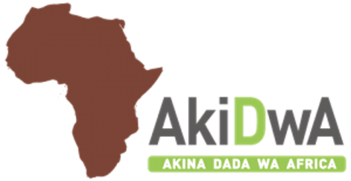 Together Changing Futures - AkiDwA Information Session image