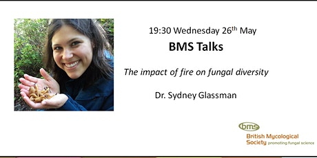 The impact of fire on fungal diversity tickets