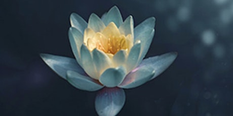Mindful Awareness Drop-in Session tickets