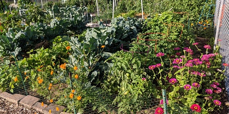 Shared Spaces: Virtual Tour of our Community Gardens (webinar) tickets